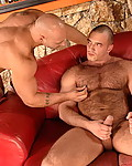 Gallery from Tight Gay Holes! Description: Handsome boy sucks friend's meaty dicks at the bar